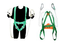 harness with double lanyard